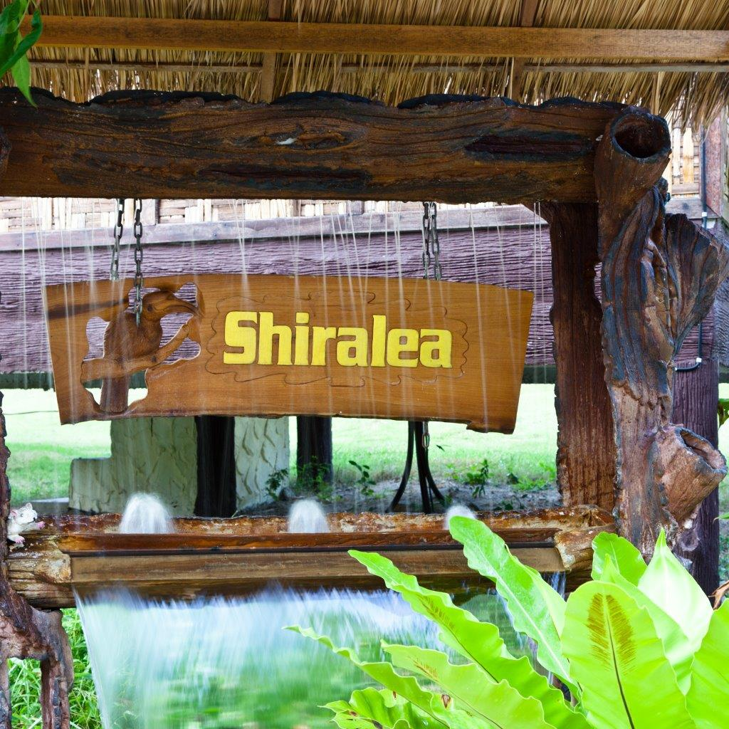 Shiralea Entrance!