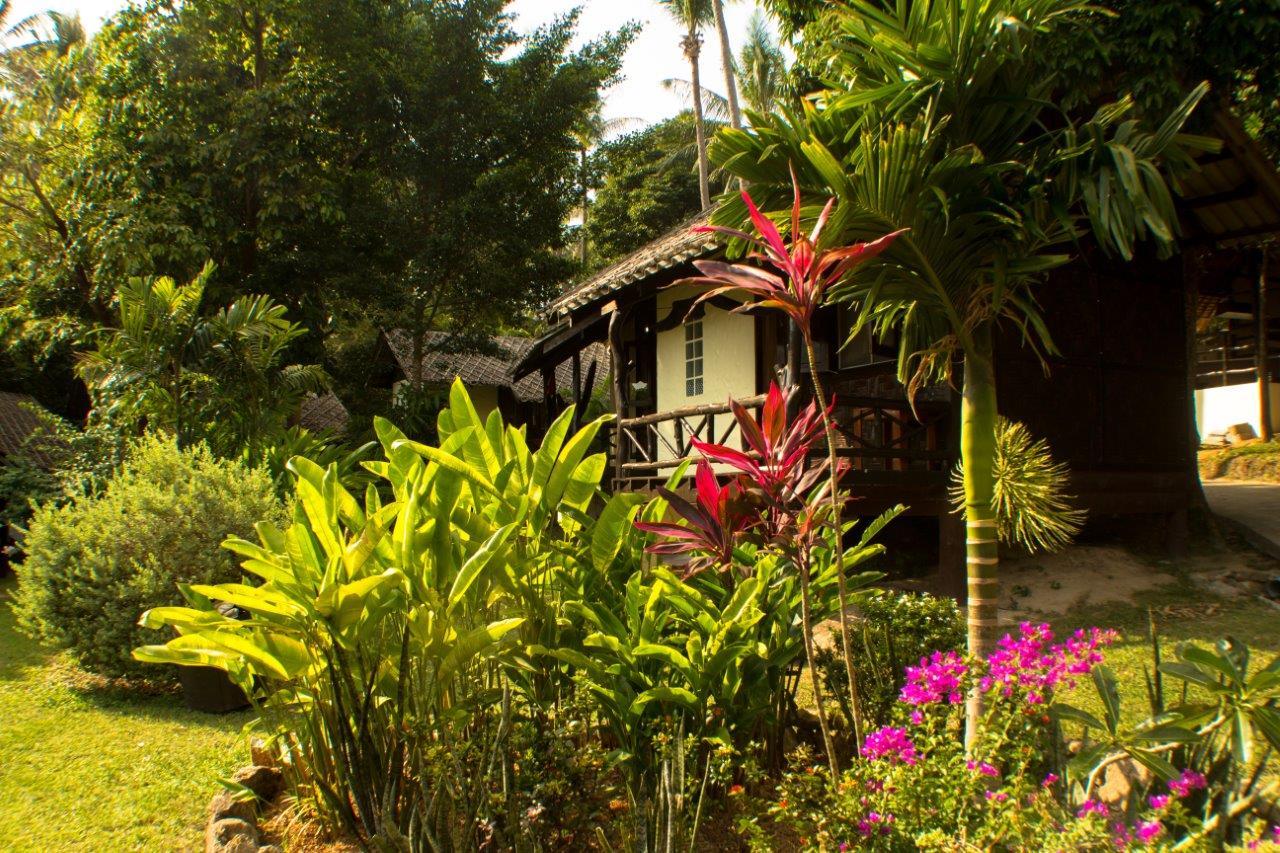 Bamboo Village Bungalow!